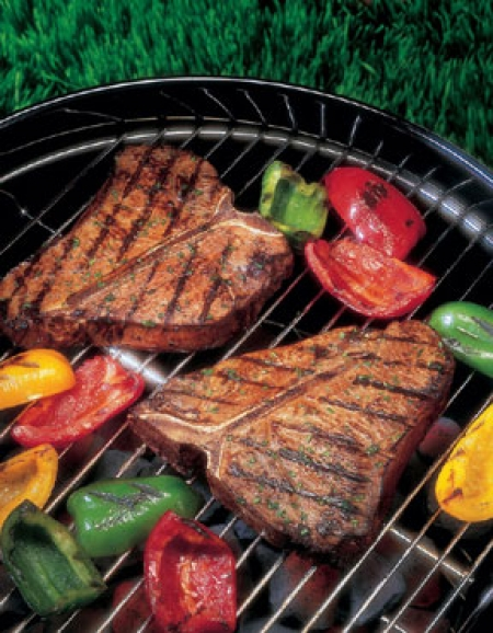 Gas, Charcoal & Ceramic Grills & Smokers