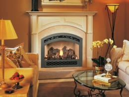 FPX 564 High Output Gas Fireplace